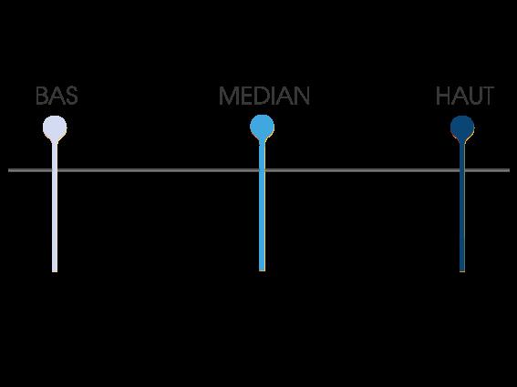 niveau bleu